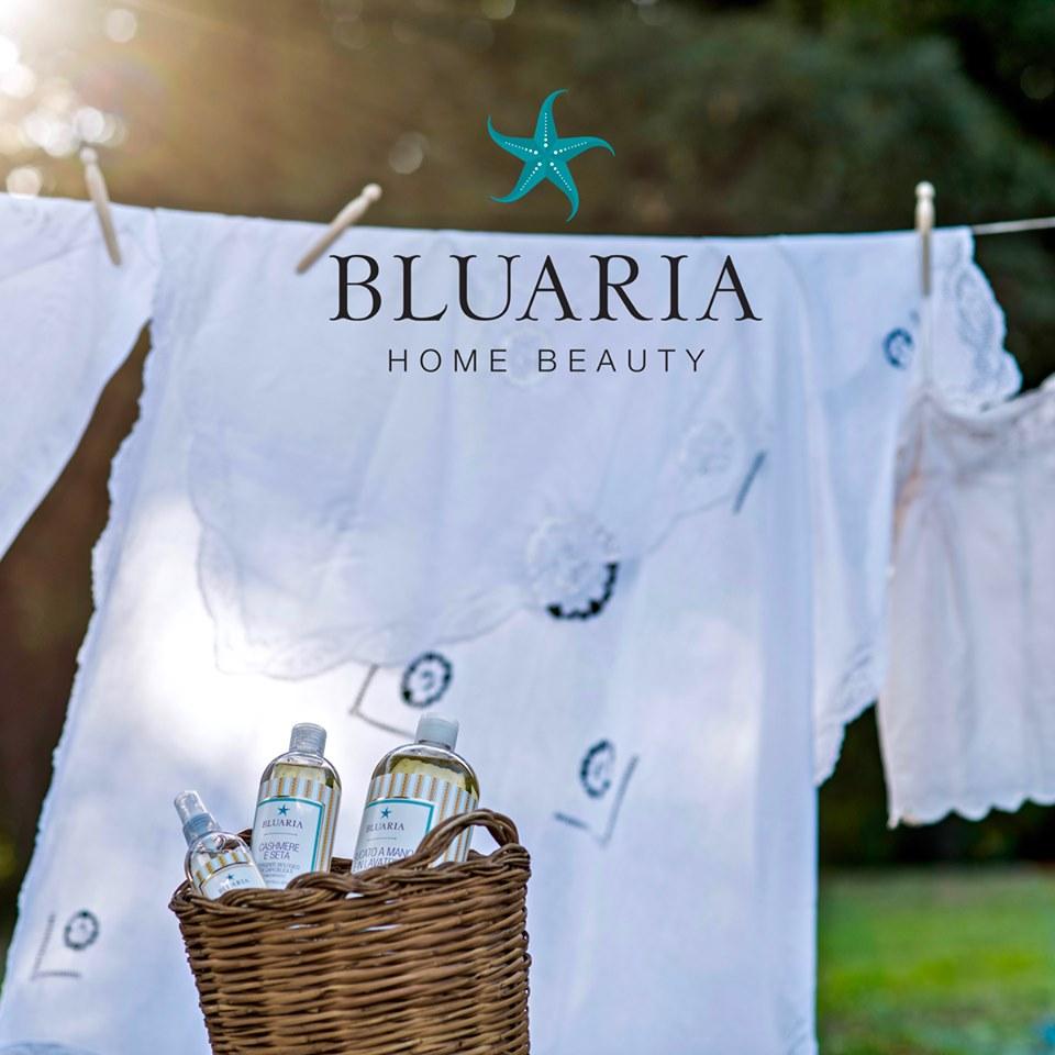 Morfeus wellness Bluaria